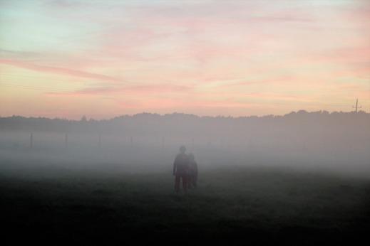 571c6-the-fog-2644413_960_720